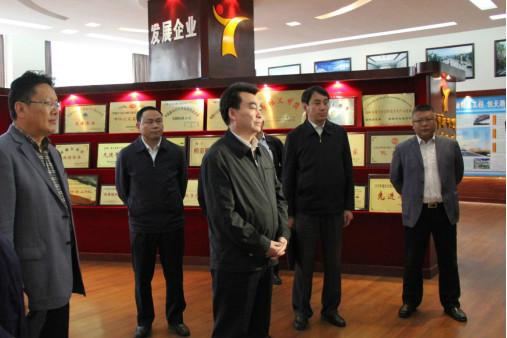 自治区副主席汪海州、中国电建集团 董事长晏志勇莅临公司调研座谈